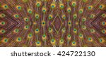Peacock Feathers Background.
