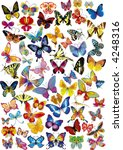 lots of different multicolored... | Shutterstock .eps vector #4248316