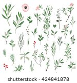 Set sprigs of green plants. Plants can use flyers, patterns, postcards, invitations.