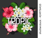 background with tropical... | Shutterstock .eps vector #424976410