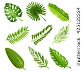 collection of green decorative... | Shutterstock .eps vector #425122234