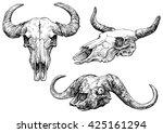 A Set Of Animal Skulls   Hand...