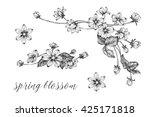 vintage style flower  bouquet ... | Shutterstock .eps vector #425171818