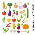 collection of vegetables  ... | Shutterstock .eps vector #425181013