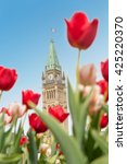 Small photo of The Peace Tower of the Parliament of Canada with red blurred tulips in the foreground, in Ottawa, during Canadian Tulip Festival (2016)