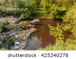ecology concept. small river ... | Shutterstock . vector #425240278