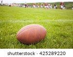 close up of an american... | Shutterstock . vector #425289220