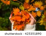 Hands Holding Autumn Leaves Of...