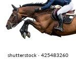 horse jumping  equestrian... | Shutterstock . vector #425483260