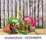 gardening equipment. | Shutterstock . vector #425548894