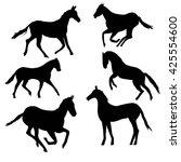 horse silhouette   vector...   Shutterstock .eps vector #425554600