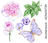 set of watercolor hand painted...   Shutterstock . vector #425643739