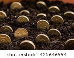 Growing Pound Sterling Coins I...