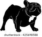 the dog breed bulldog. dog... | Shutterstock .eps vector #425698588