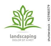 landscaping ecology design... | Shutterstock .eps vector #425980579