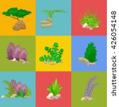 set isolated colorful corals...   Shutterstock .eps vector #426054148