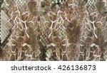 Stock photo snake skin background 426136873