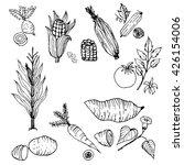 vegetables set hand drawn... | Shutterstock .eps vector #426154006