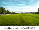 Horse Racecourse Field In...