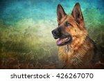 drawing german shepherd dog... | Shutterstock . vector #426267070