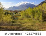 spring scene in the wasatch... | Shutterstock . vector #426274588