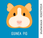 Guinea Pig Portrait. Abstract...