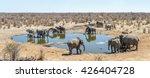 panoramic view of moringa... | Shutterstock . vector #426404728