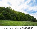 open meadow near forest | Shutterstock . vector #426494758