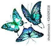 butterflies design | Shutterstock . vector #426509218