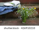 outdoors  a book  a blanket and ...   Shutterstock . vector #426910210