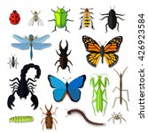 set of various insects design... | Shutterstock . vector #426923584