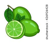 lime on a white background.... | Shutterstock .eps vector #426926428