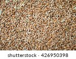 seeds of wheat background   Shutterstock . vector #426950398