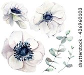 elegant flower set  in vintage... | Shutterstock . vector #426960103