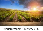 red wine with barrel on... | Shutterstock . vector #426997918