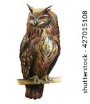 owl drawing  bubo   | Shutterstock . vector #427015108