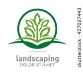 landscaping green ecology... | Shutterstock .eps vector #427037443