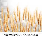 Field Of Golden Wheat. Eps 10...