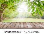 empty wooden table with garden... | Shutterstock . vector #427186903