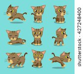Stock vector cartoon character brown tabby cat poses 427248400