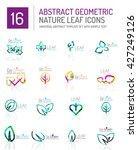 geometric leaf icon set. thin... | Shutterstock .eps vector #427249126