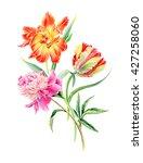 hand drawn watercolor sunny... | Shutterstock . vector #427258060