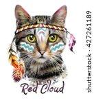 cat face illustration. american ...   Shutterstock . vector #427261189