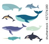 Set Of Vector Whales And...