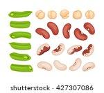 fresh cut vegetables isolated... | Shutterstock .eps vector #427307086