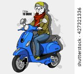 vector white dog man on a blue... | Shutterstock .eps vector #427321336