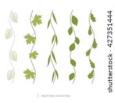 set of seamless wavy twigs with ... | Shutterstock .eps vector #427351444