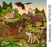 cartoon animals in a mountain... | Shutterstock .eps vector #427414120