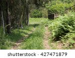 country road | Shutterstock . vector #427471879