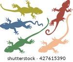 gekko media artwork   Shutterstock .eps vector #427615390